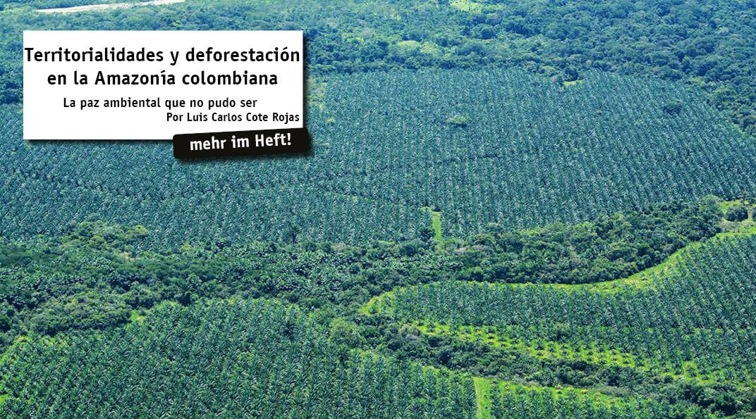 La Amazonia colombiana comprende más del 40% del territorio continental del país y cuenta con 39 millones de hectáreas de selva tropical –un área mayor a toda la superficie de Alemania–. En el 2017, cerca de 145 mil hectáreas de selva amazónica...
