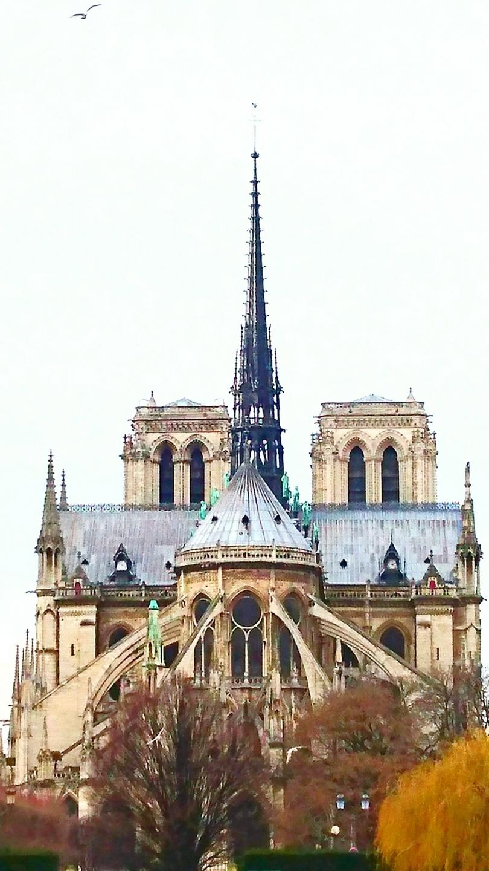 ❇️ Notre Dame de Paris ❇️
