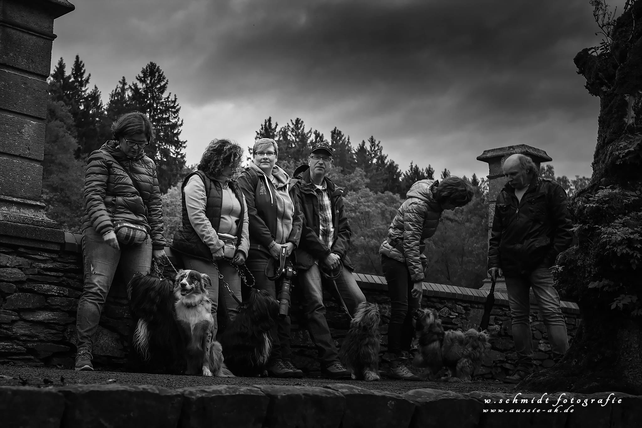 Oktober 2016 - kleine Tibi-Wanderung in Marienstatt mit Aussiebetreuung