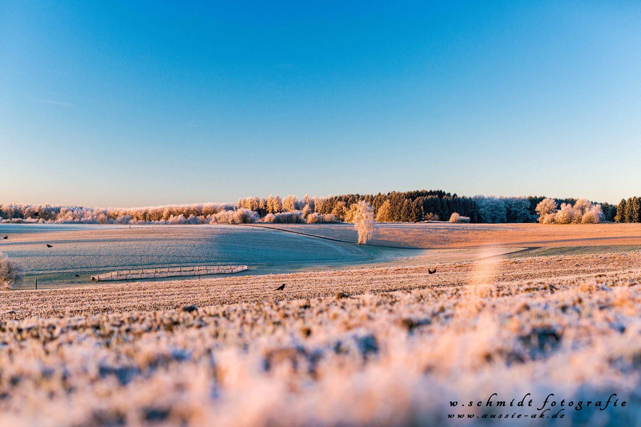 Dezember 2016 - Wintertraum in der Rehhardt
