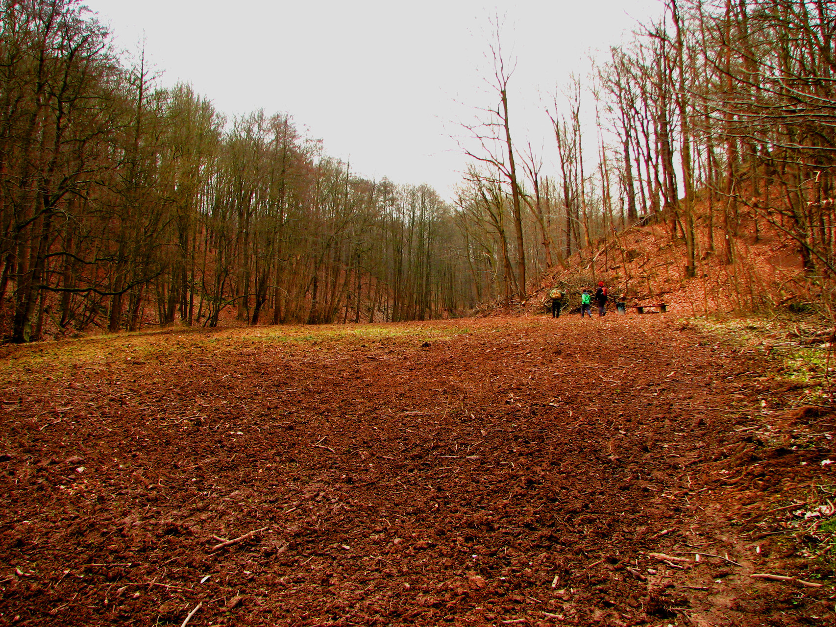 Das Lehmfeld -neue Landschaftsstruktur - ohne Wanderweg