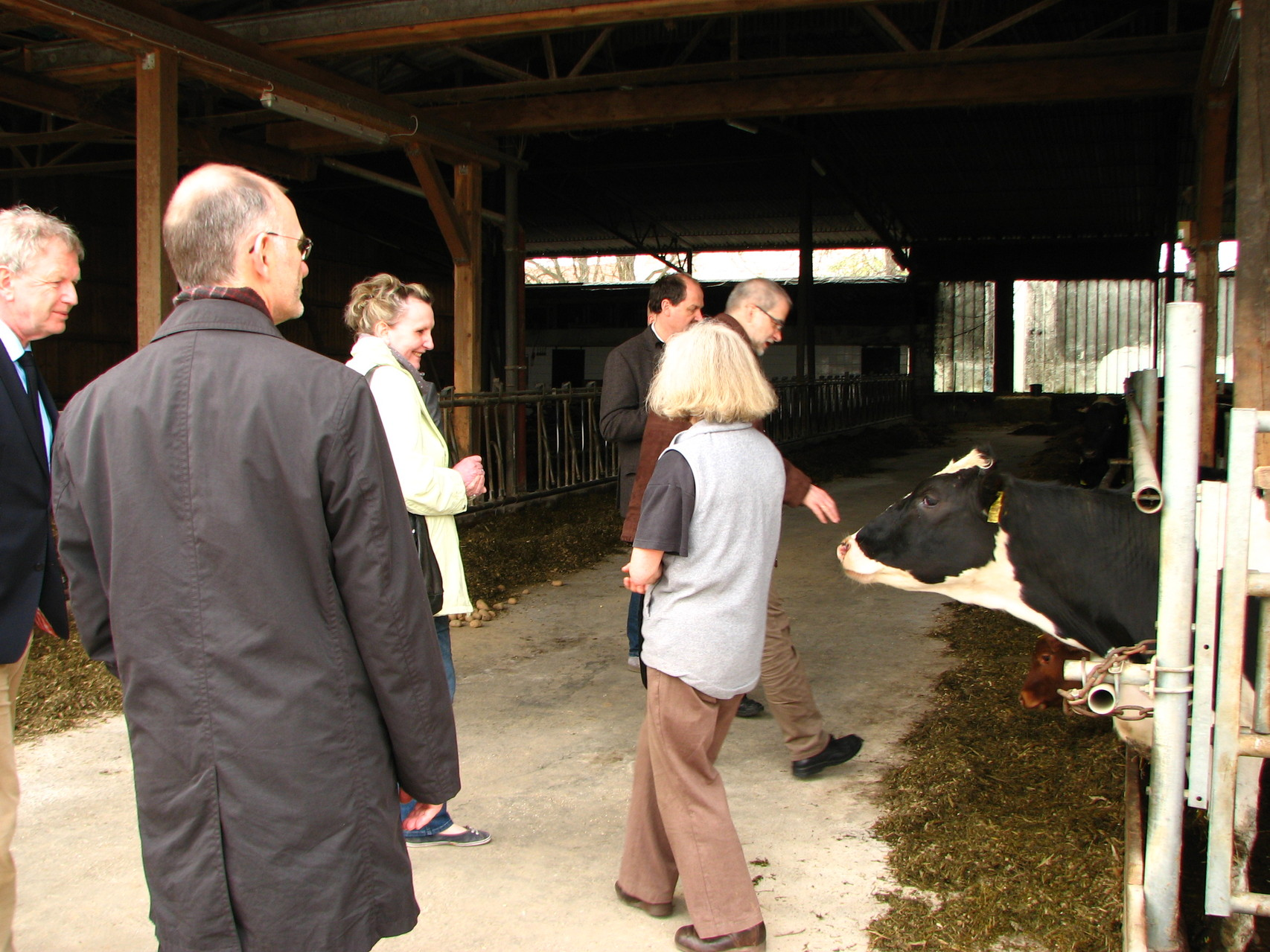 Frau Probst mit uns bei den Kühen