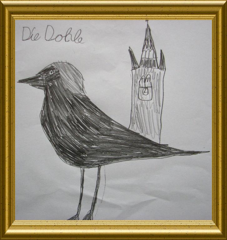 Sebastian Dohle