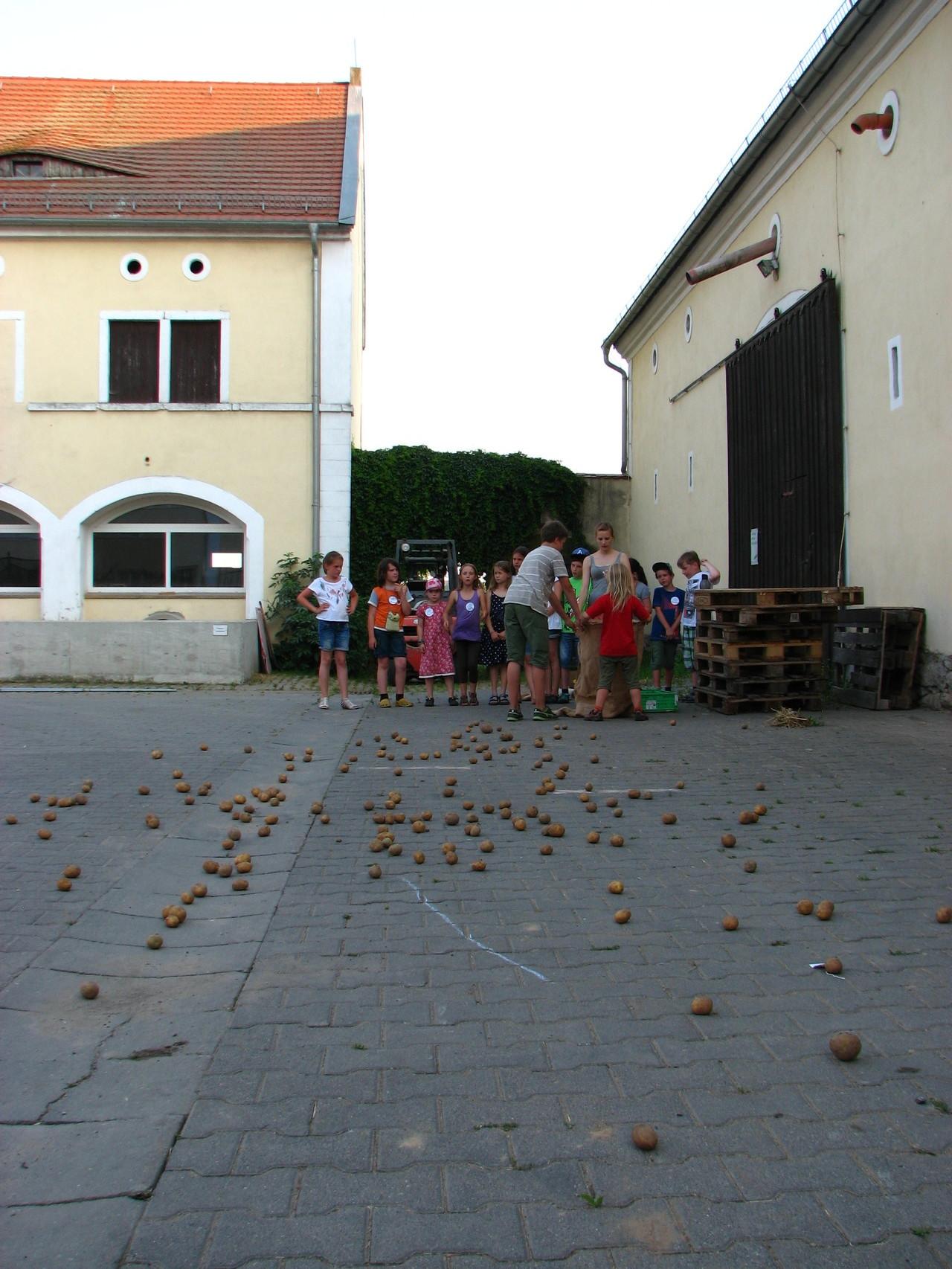 Kartoffeln balancieren