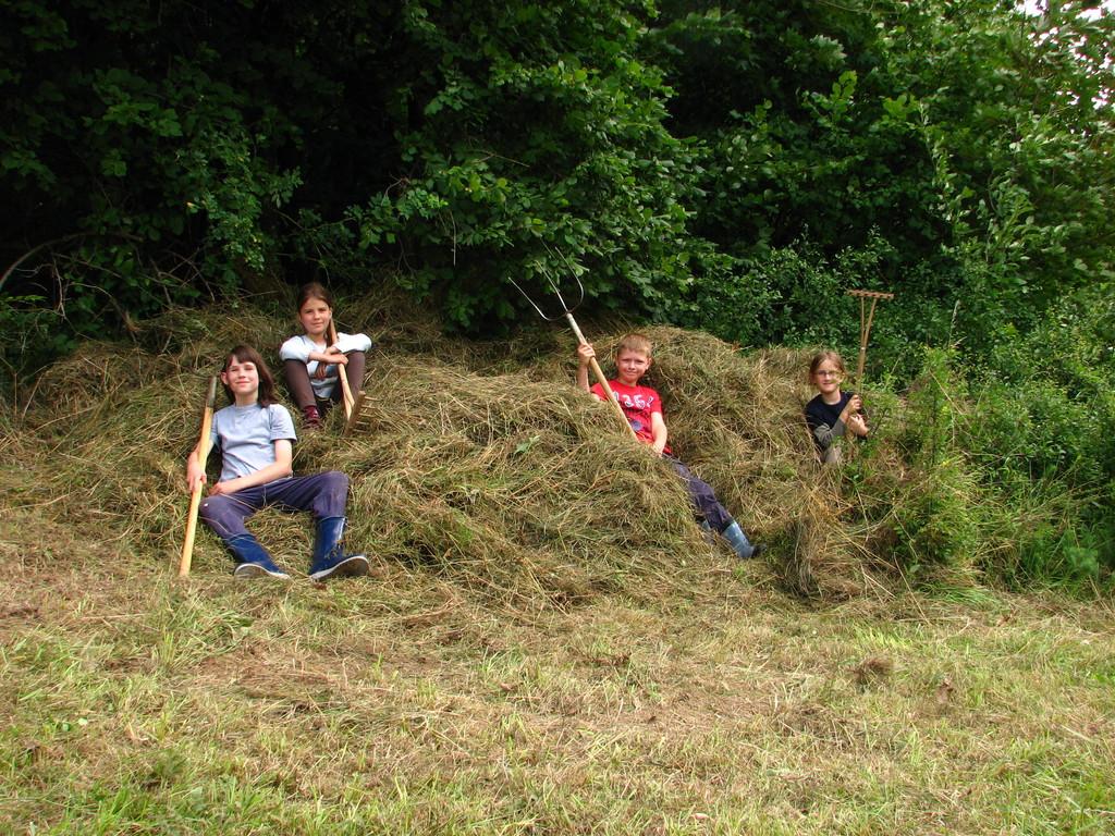 Das sind wir, Ameisen in Aktion--Kinder von Heute!