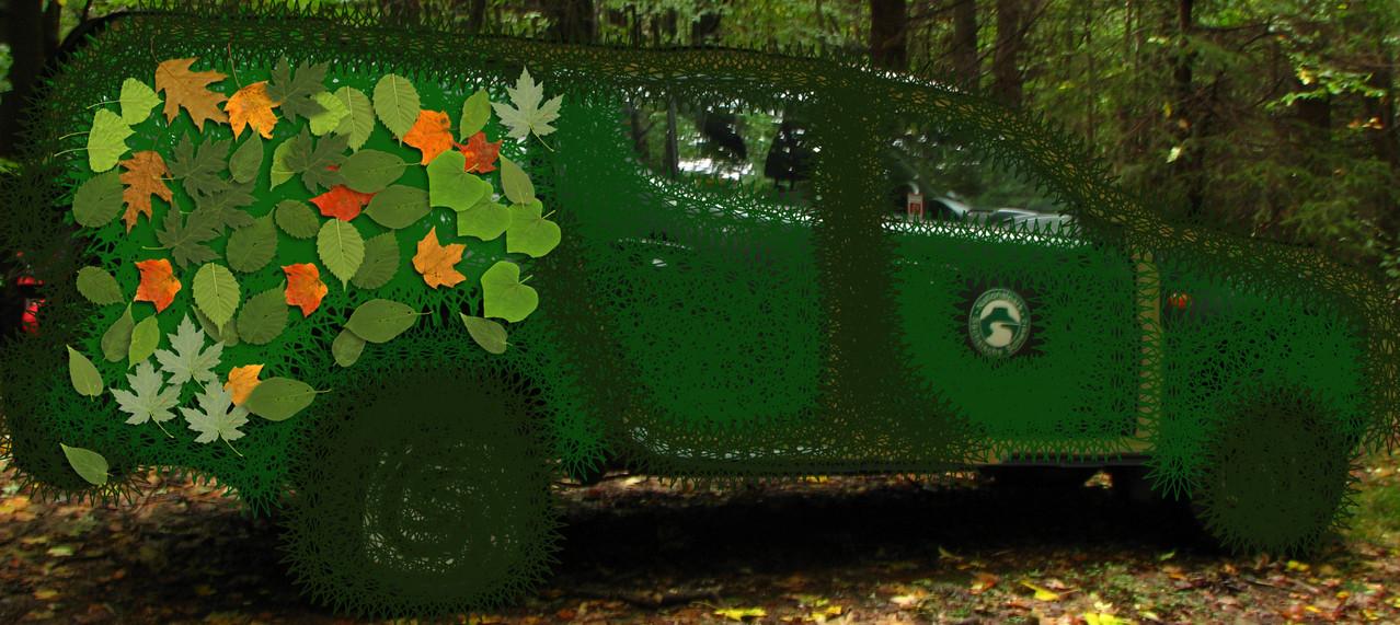 Spezialtarnung der Forstautos