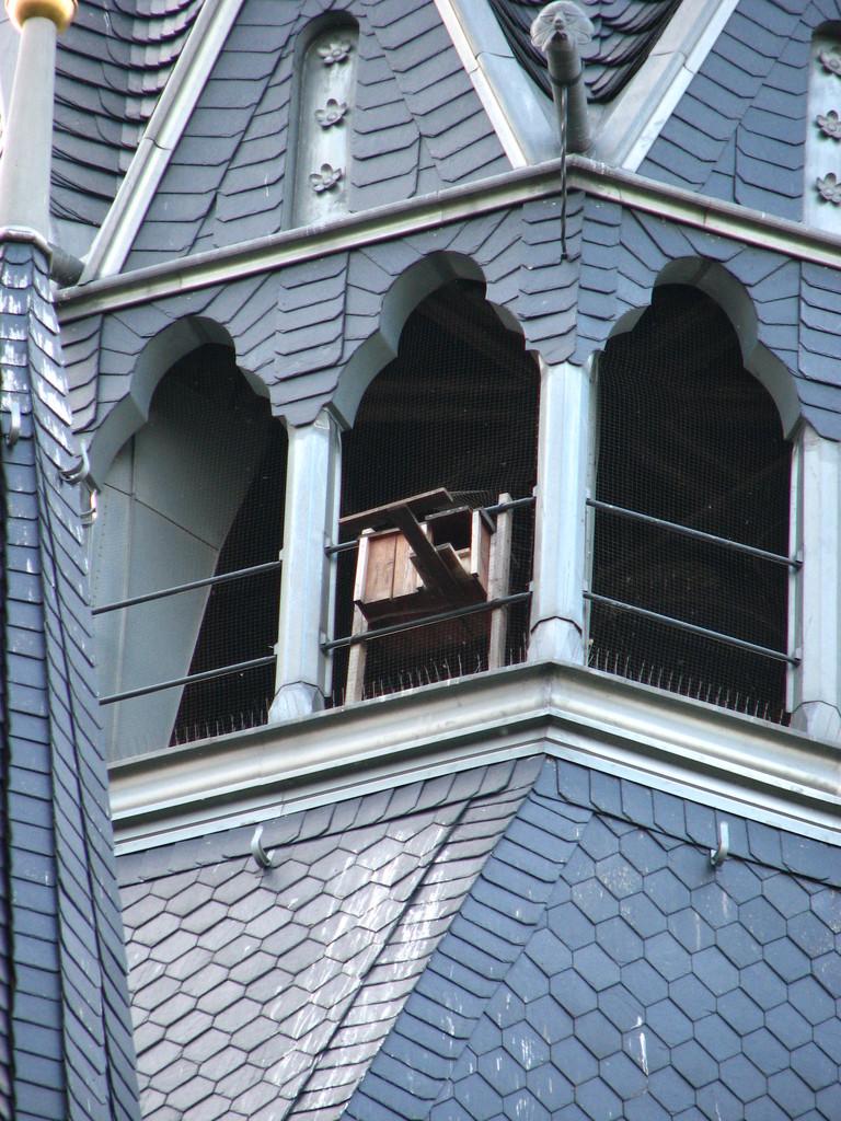 Der Falkenkasten am Turm