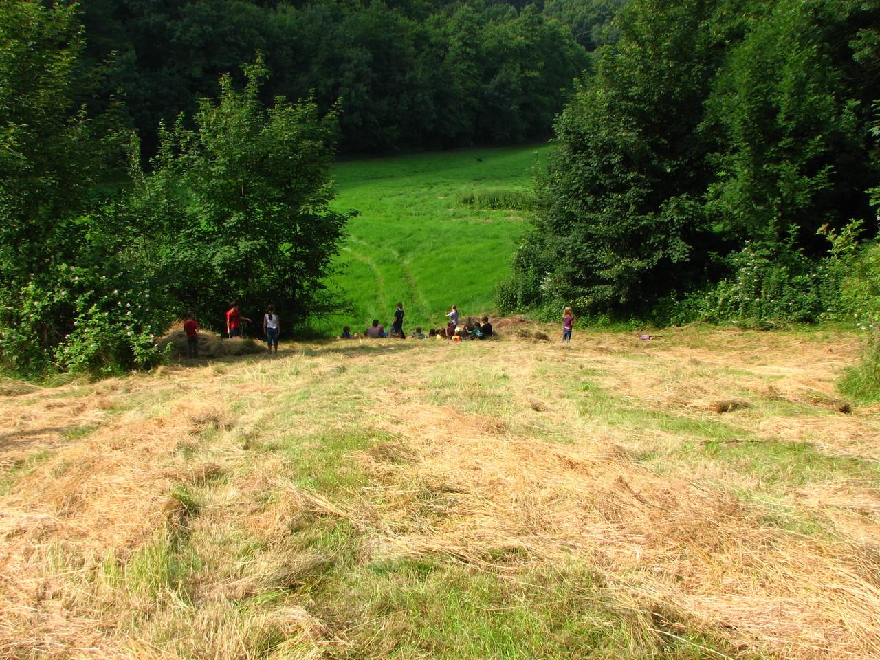 Da liegen einige Grasbahnen.
