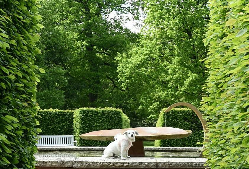 Portraitshooting im Gräflichen Park Bad Driburg