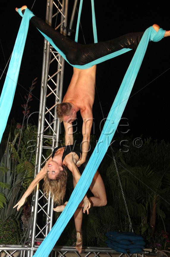 Aerial performers at a private party.