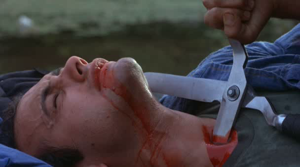 Carnage - The Burning de Tony Maylam - 1981