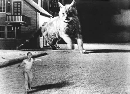 L'Homme Qui Rétrécit (1957)