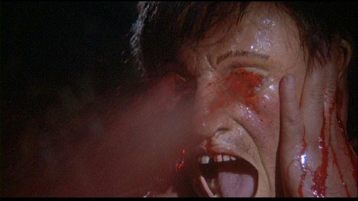 Hurlements 2 (1985)