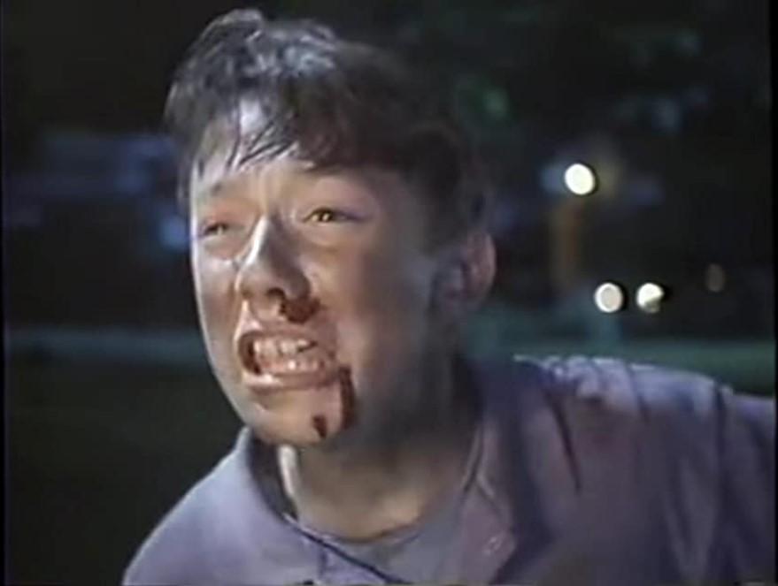 Le Fils Diabolique (1994)