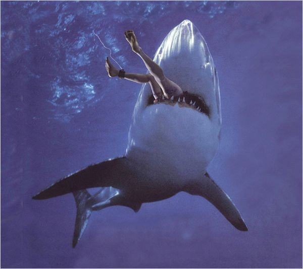 Killer Shark (2011)
