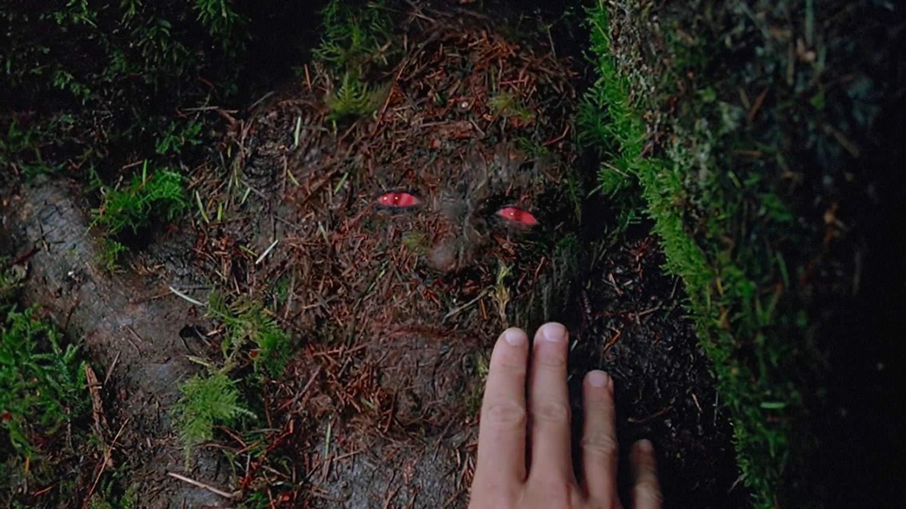 Aux Frontières Du Réel - Saison 5 (1997)