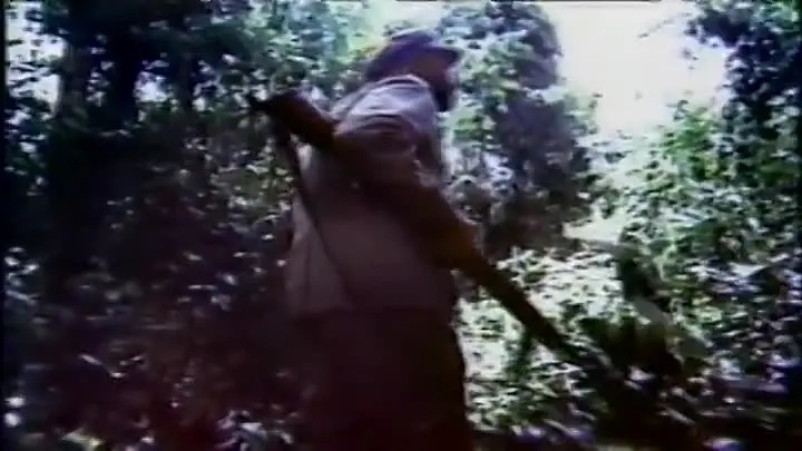 Les Yeux De La Jungle (1978)