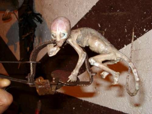 La Créature de Metepec - Mythes & Légendes Urbaines