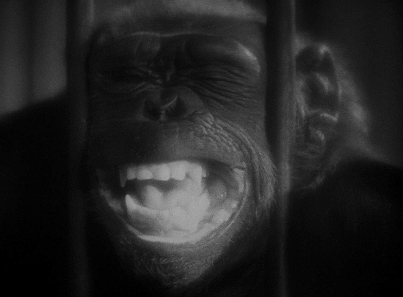 Double Assassinat Dans La Rue Morgue (1932)