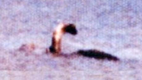 Une enorme queue dans les dunes du cap - 4 1