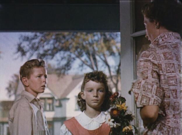 Les Envahisseurs De La Planète Rouge (1953)
