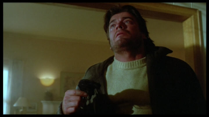 Le Beau-Père (1987)