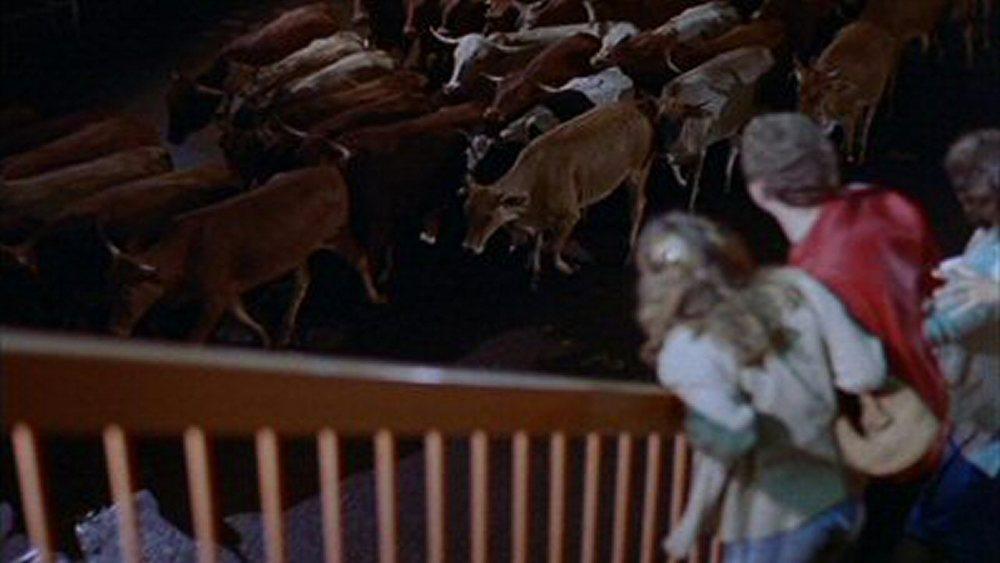 Les Bêtes Férocent Attaquent (1984)