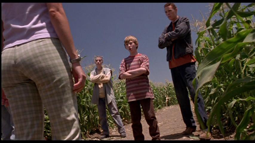 Les Démons Du Maïs 5 - La Secte Des Damnés (1998)