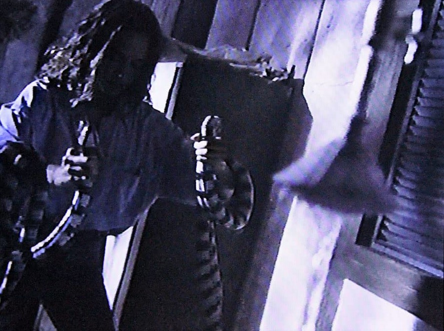 Mortel Poison (1994)