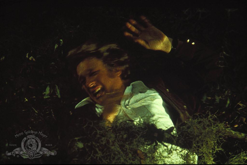 Les Crapauds (1972)