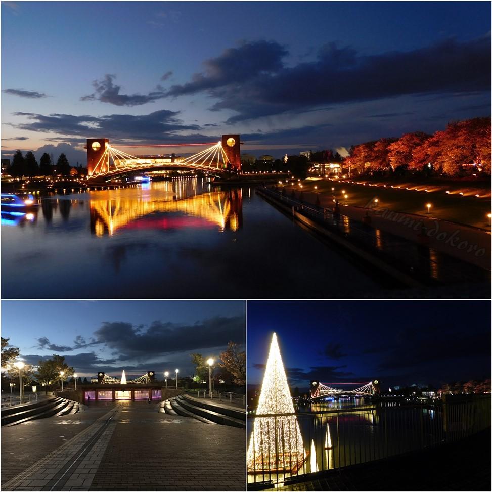 環水公園の夜