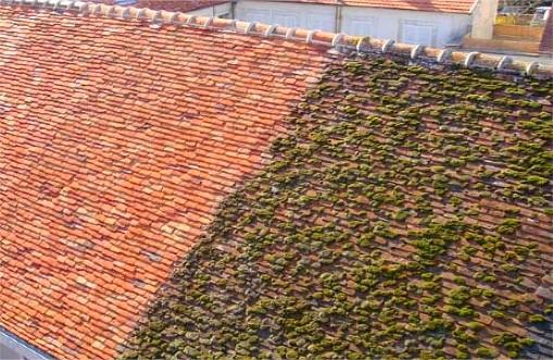 Rénovation de toiture à Sens