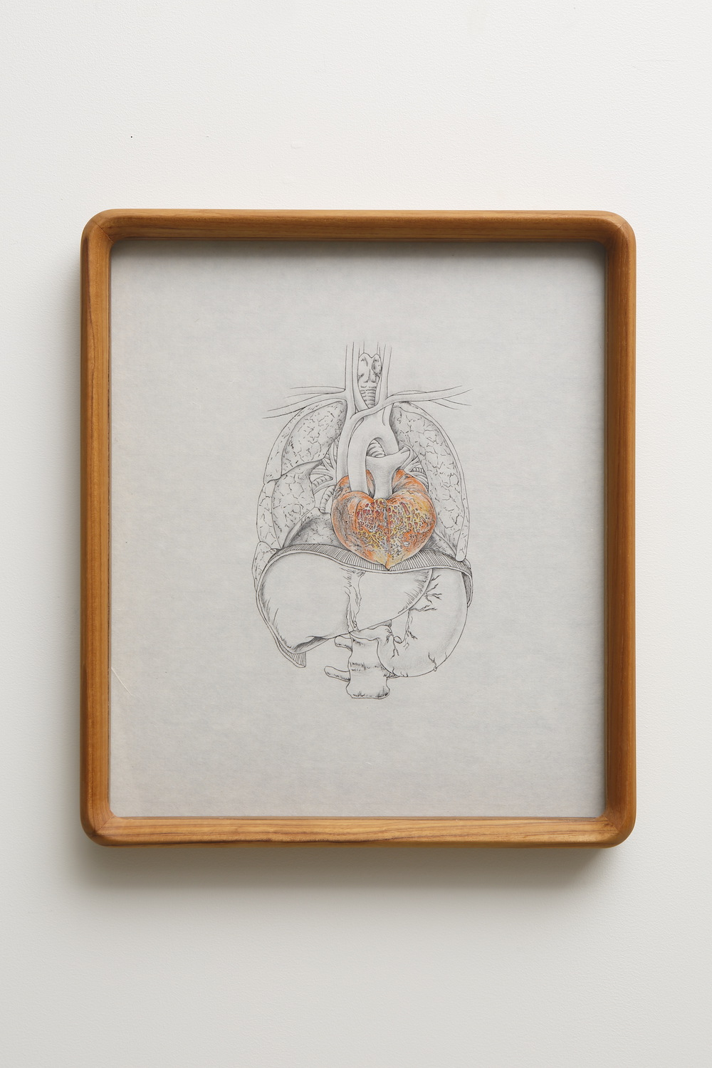Tabaimo, flow-wer 020, 2015, ink, bees wax crayon, color pencil and pencil on Japanese paper, 39 x 33.8 x 4.6 cm (frame)