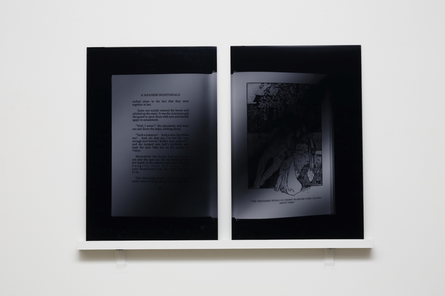 A Japanese Nightingale, 2017, digital C-print, mounted on acrylic, 35.6 x 23.8 cm each (image), diptych, edition of 5 + 2 A.P.