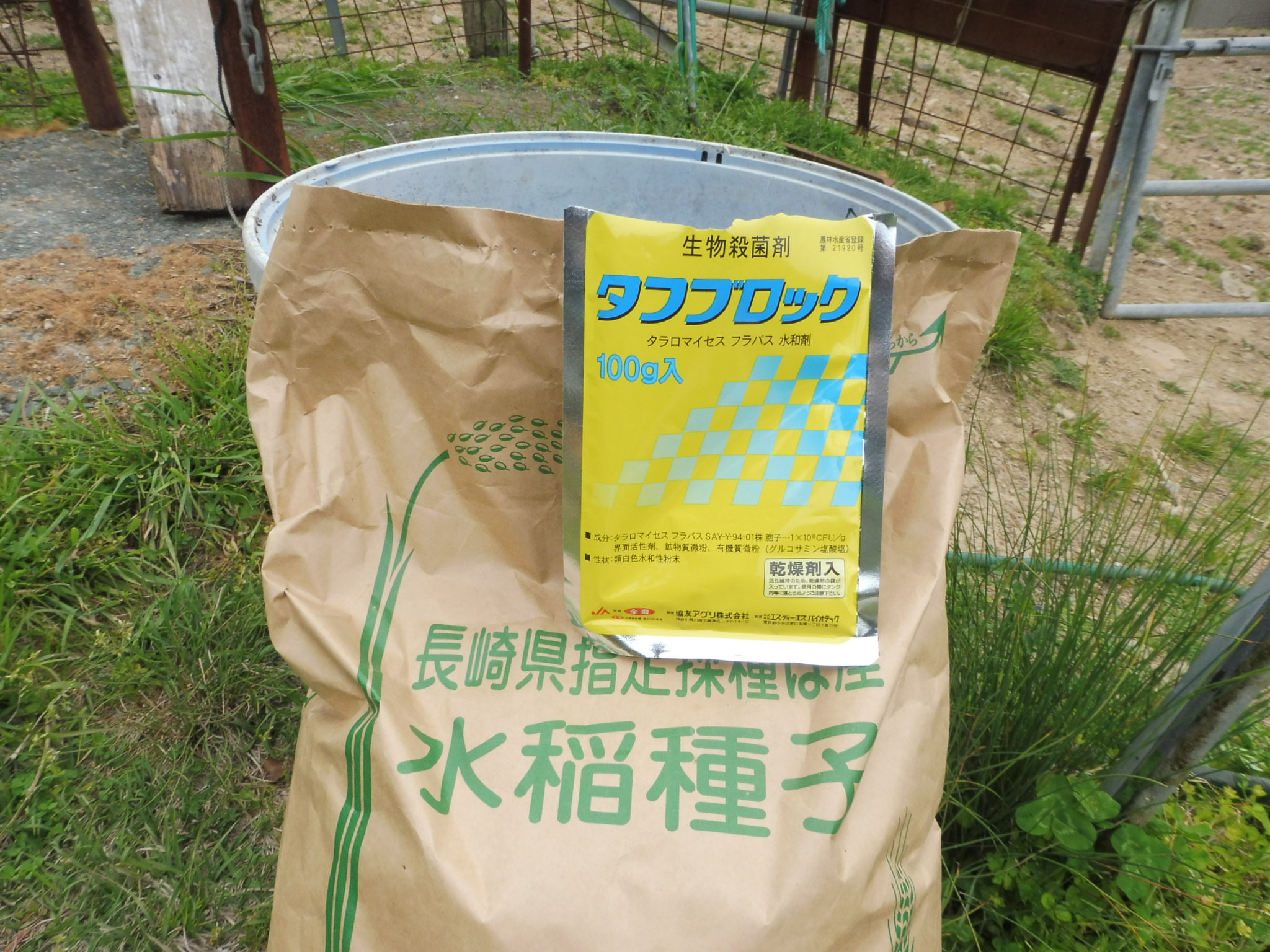 私たちは種子消毒に生物殺菌剤のタフブロックを使用しています。有用糸状菌(タラロマイセス フラバス)を有効成分とする微生物防除剤です。