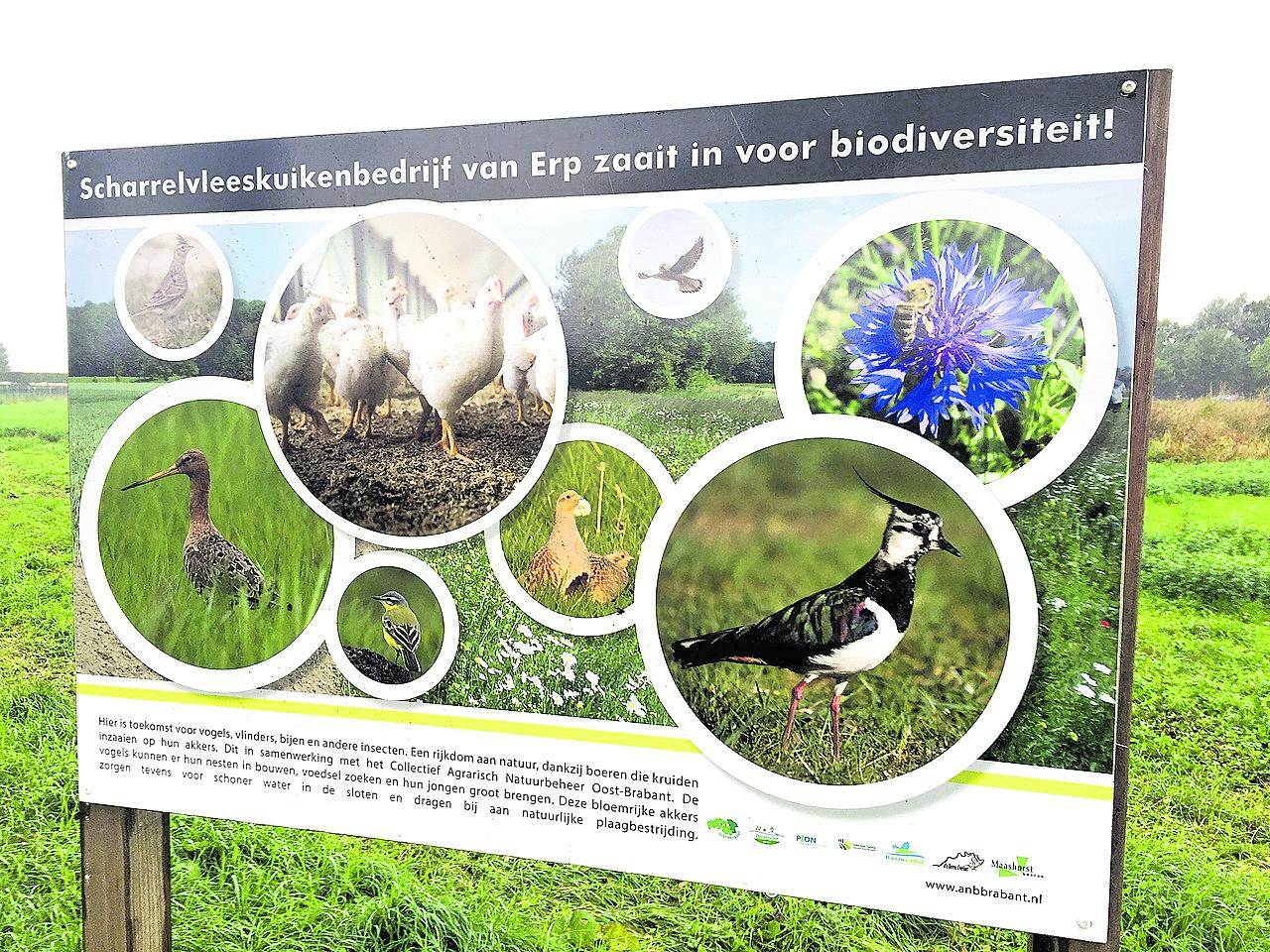Planten en dieren krijgen  meer ruimte in Sint Anthonis