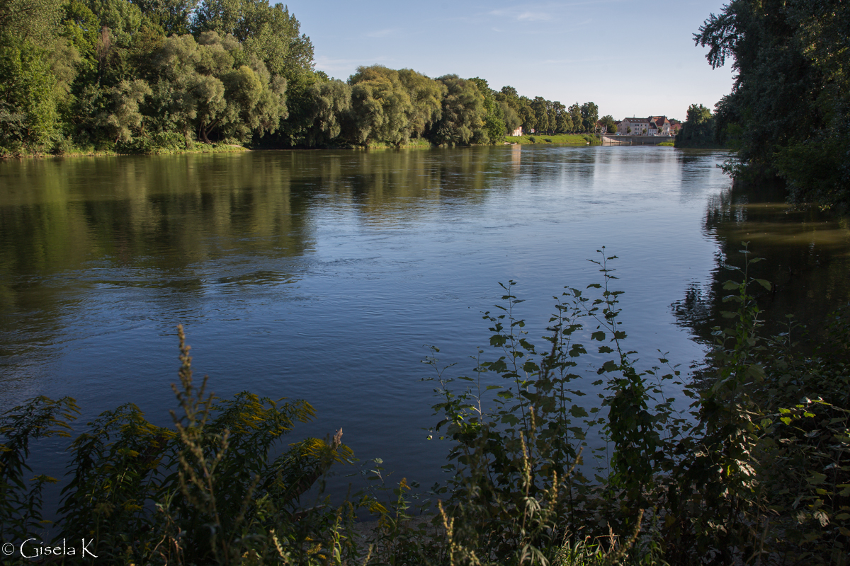 Die Donau bei Neuburg