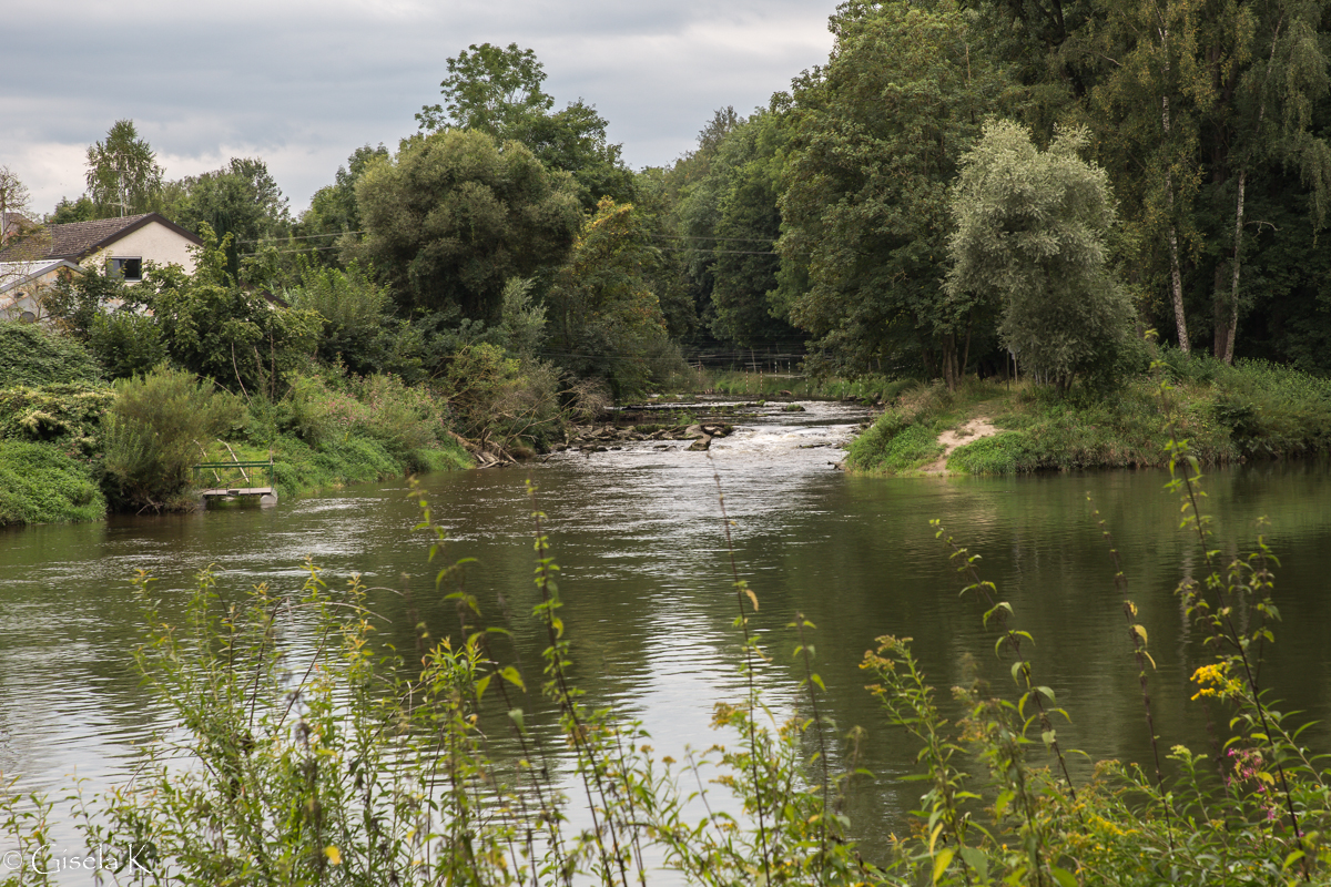 Die Günz mündet in die Donau