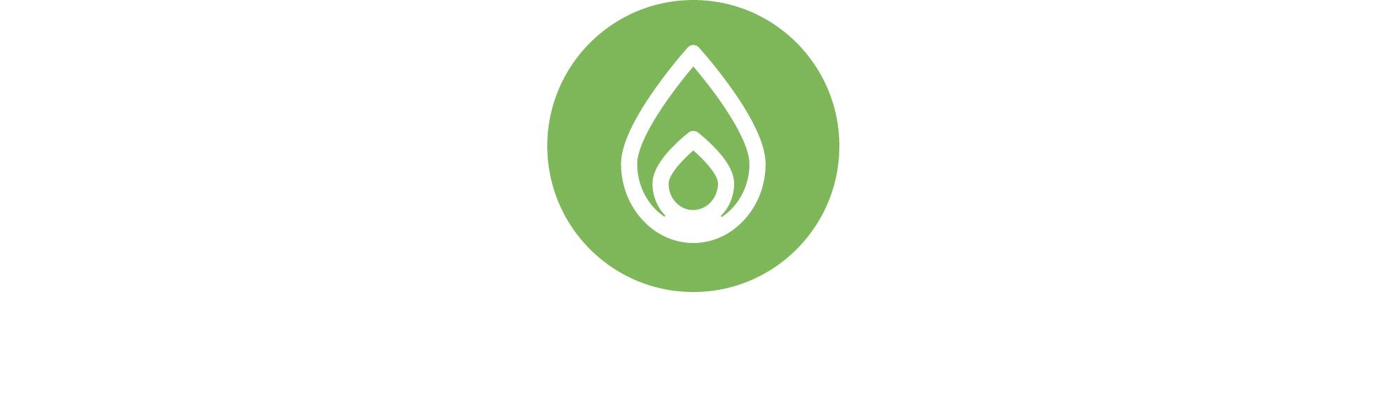 "<a href=""#schritt2"">Grünes LNG mit Biogas aus erneuerbaren Energien</a>"