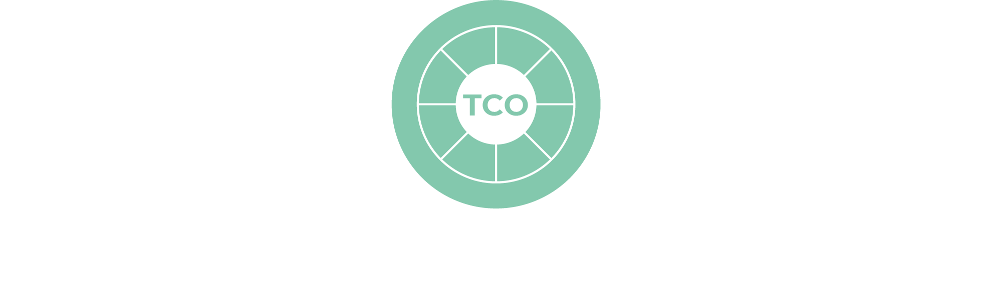 Wirtschaftlichkeitsberechnung (TCO)