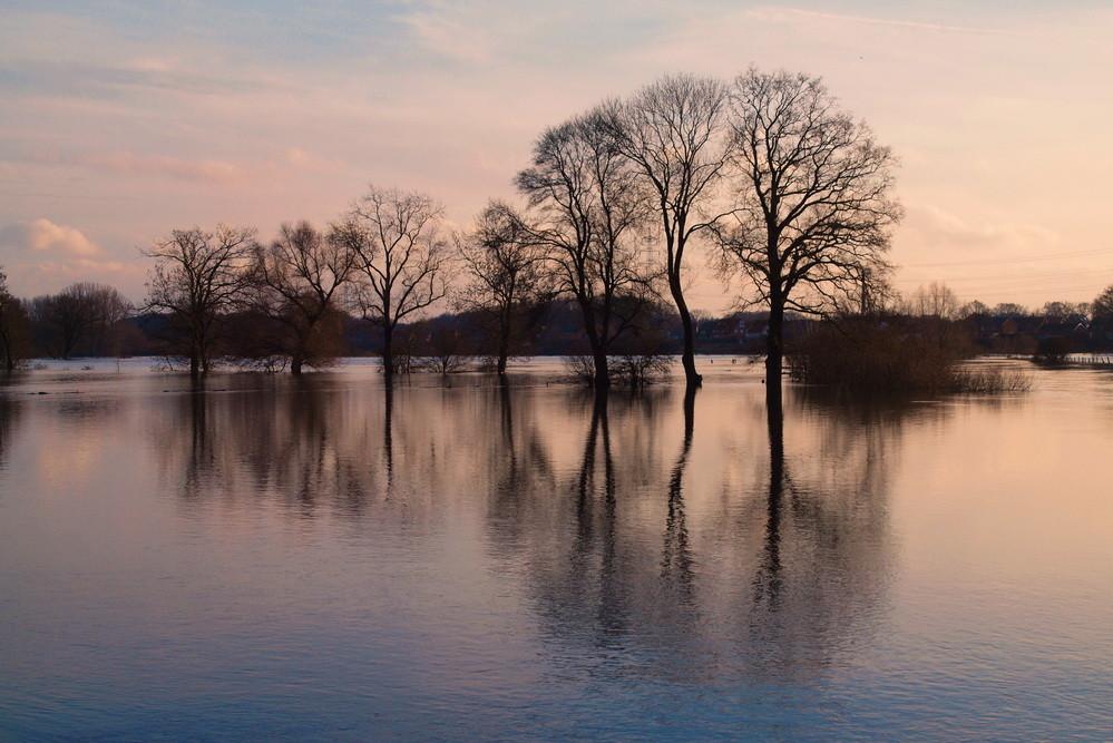 Ems-Hochwasser-2011-01-bei Bisping