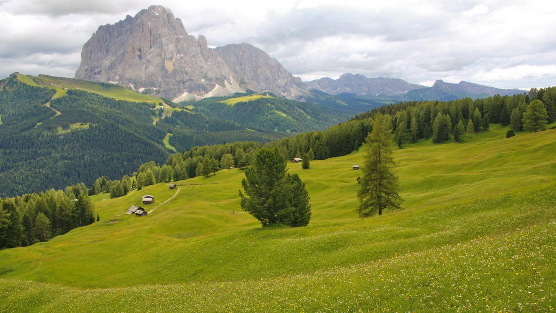 Südtirol St. Ulrich