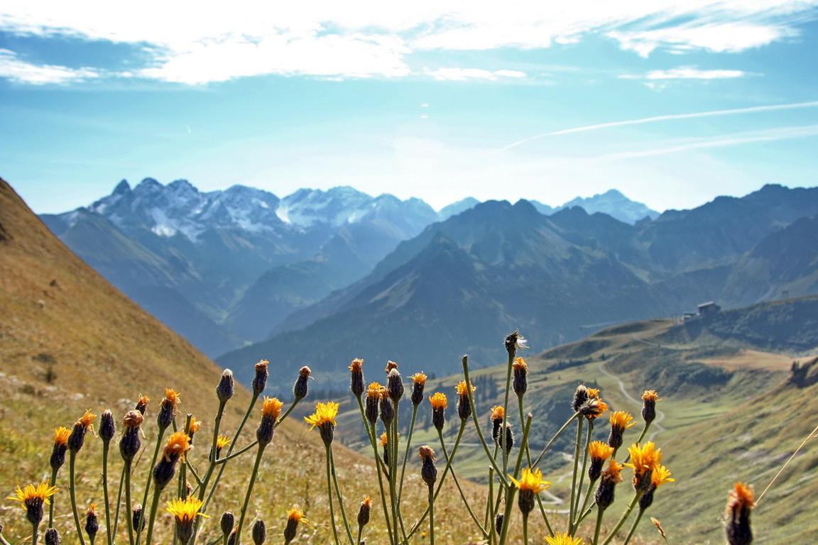 Allgäuer-Alpen - 2008-10