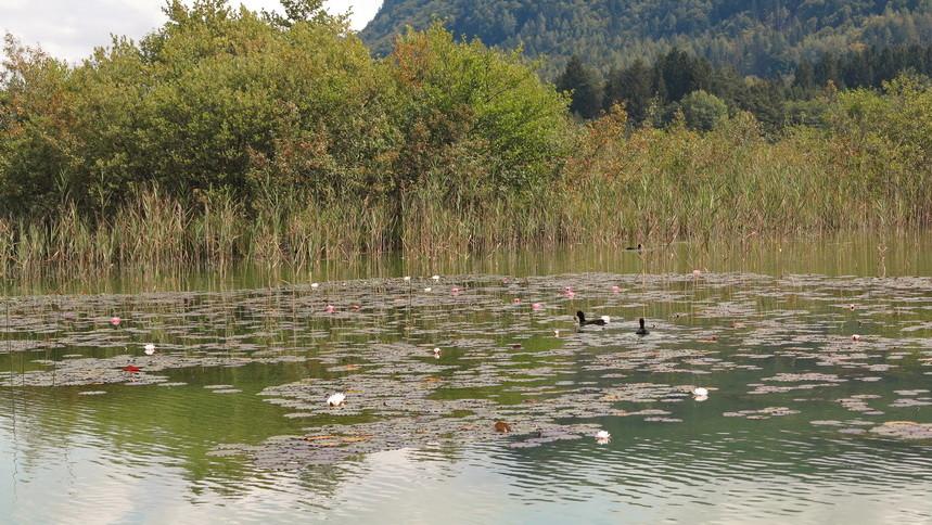 ...Radeltour am Keutschach-See