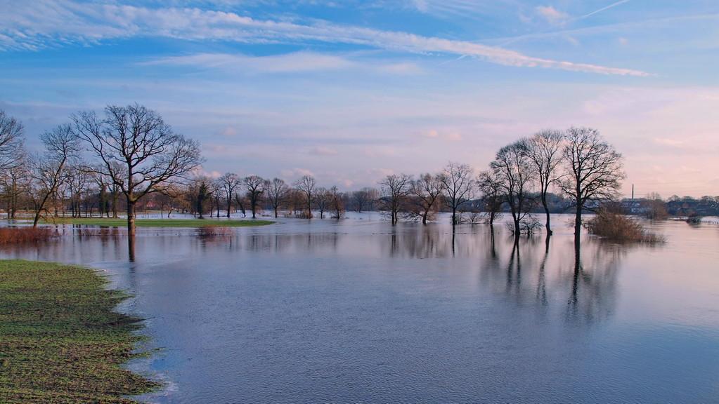 Ems-Hochwasser-2011-01-bei Bisping-2