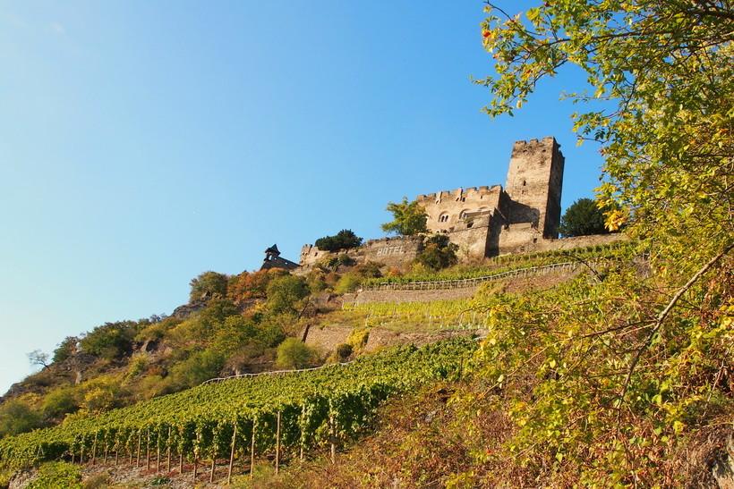 Burg Gutenfels  (Kaub)
