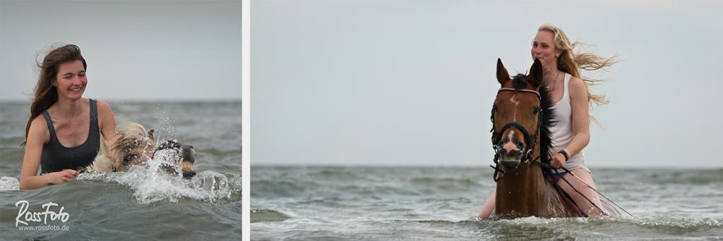 RossFoto; Dana Krimmling, Pferdefotografie, Fotografie, wanderreiten, westernreiten, jagdreiten, freizeitreiten, Reiten im Wasser, Baden mit Pferd