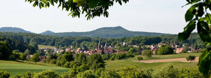RossFoto Dana Krimmling Climbach en Alsace