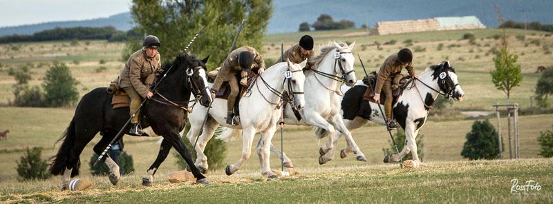 V. Internationale Deutsche Meisterschaften der Kavallerie 2019, RossFoto Dana Krimmling