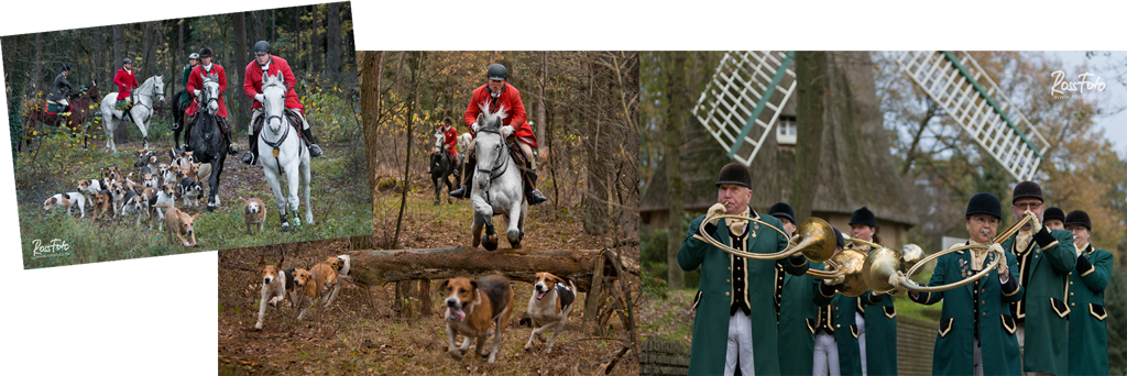 Rossfoto Dana Krimmling; Aselager Jagdtage 2015; Cappenberger Meute; Pferdefotografie; Rossfoto Dana Krimmling; Wanderreiten; Jagdreiten; Jagen Rote Jagd; Schleppjagd